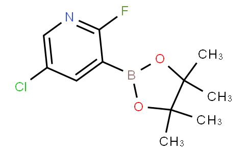 5-chloro-2-fluoro-3-(4,4,5,5-tetramethyl-1,3,2-dioxaborolan-2-yl)pyridine