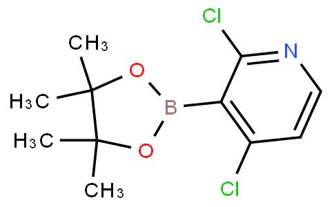 2,4-dichloro-3-(4,4,5,5-tetramethyl-1,3,2-dioxaborolan-2-yl)pyridine
