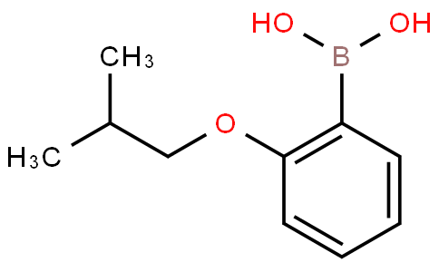 2-isobutoxyphenylboronic acid