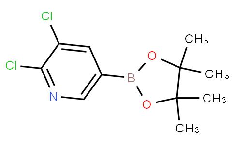 2,3-dichloro-5-(4,4,5,5-tetramethyl-1,3,2-dioxaborolan-2-yl)pyridine