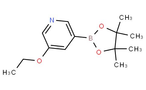 3-乙氧基-5-(4,4,5,5-四甲基-1,3,2-二氧杂环戊硼烷-2-基)吡啶
