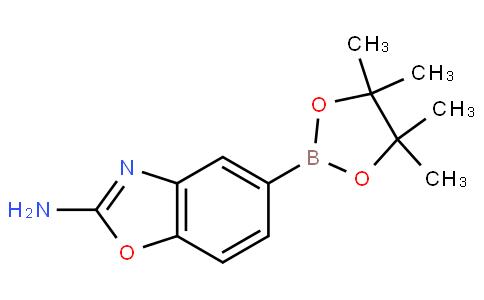 2-胺基苯并恶唑-5-硼酸酯