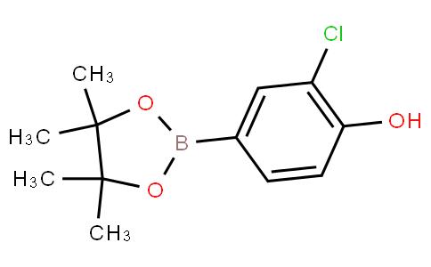 2-chloro-4-(4,4,5,5-tetramethyl-1,3,2-dioxaborolan-2-yl)phenol