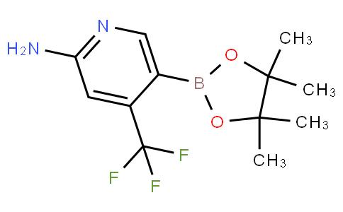 5-(4,4,5,5-tetramethyl-1,3,2-dioxaborolan-2-yl)-4-(trifluoromethyl)pyridin-2-amine