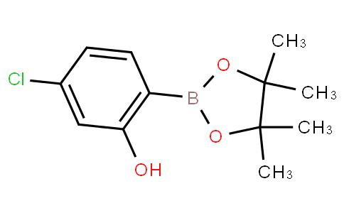 5-chloro-2-(4,4,5,5-tetramethyl-1,3,2-dioxaborolan-2-yl)phenol