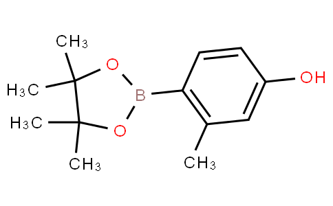 3-methyl-4-(4,4,5,5-tetramethyl-1,3,2-dioxaborolan-2-yl)phenol