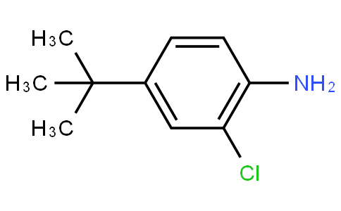 4-(tert-butyl)-2-chloroaniline