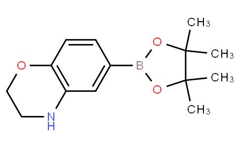 6-(4,4,5,5-tetramethyl-1,3,2-dioxaborolan-2-yl)-3,4-dihydro-2H-benzo[b][1,4]oxazine